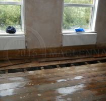 Timber Treatments Dry Rot