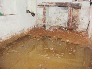 Damp Proofing Older Buildings Damp Basement