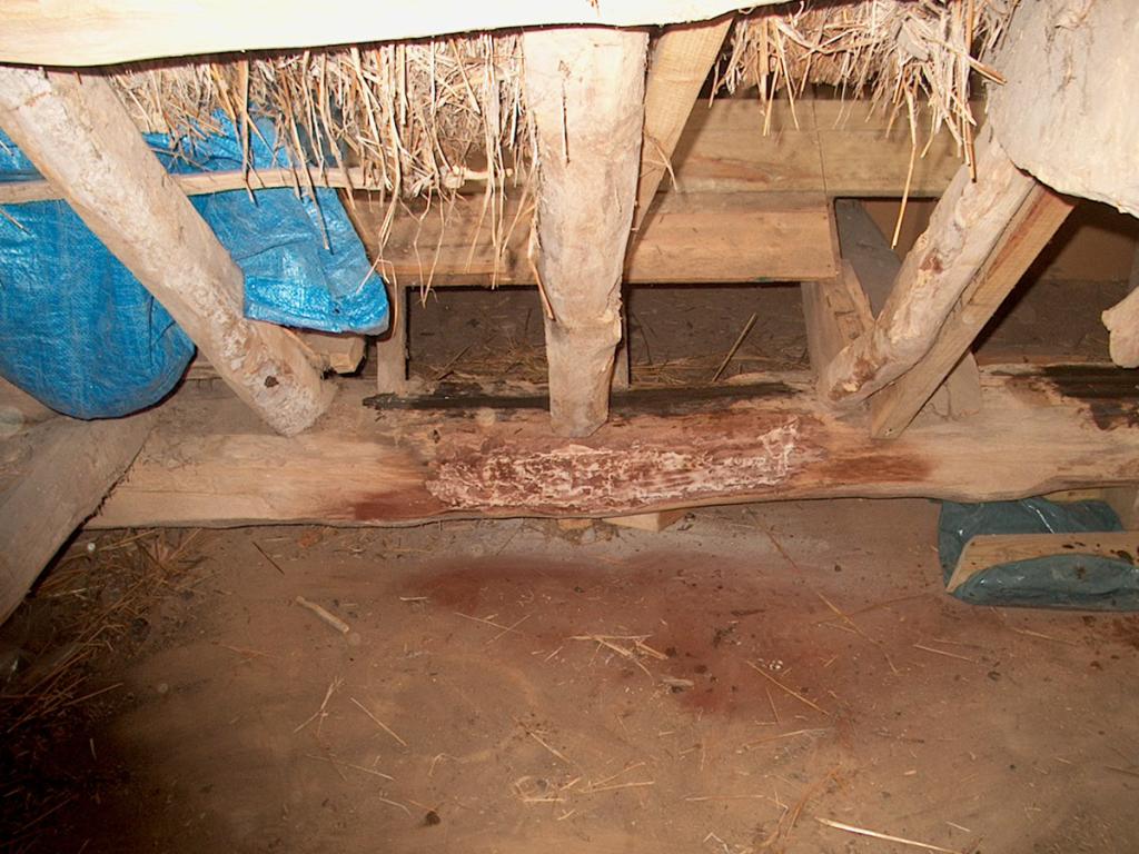 rotted timber resin repair roman villa